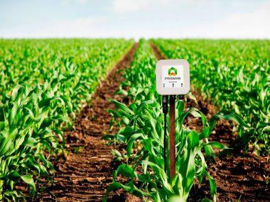 sipcam-contigo-prismab-startup-agricultura-sostenible